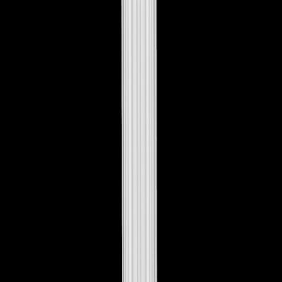 Rdzeń pilastra D1541